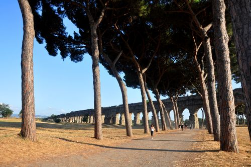 Runners in the Parco degli Acquedotti, with the Claudian acqueduct behind.