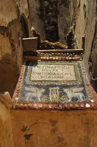 Mosaic from Columbarium of Pomponio Hylas, Rome