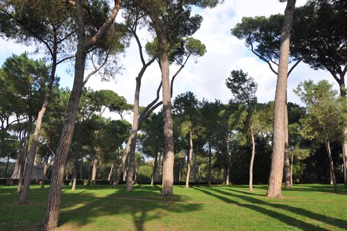 In Rome with kids? Head to a park