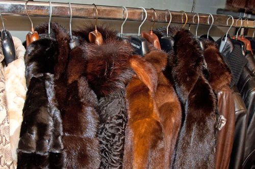 Fur coats in Rome