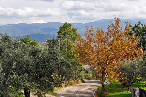 Fall in Italy in Montefalco
